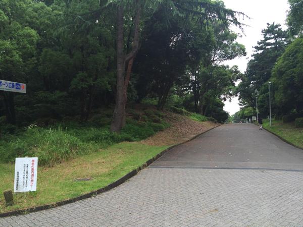 服部緑地公園道案内8
